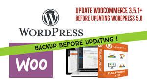 Update woocommerce plugin before updating wordpress 5.0